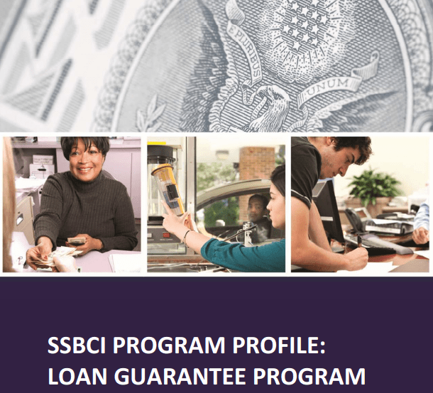 Small Business Loan Guarantees – How it Works